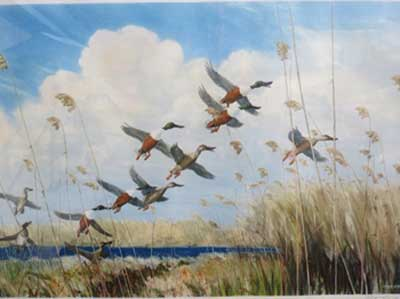 peter scott shovelers rising